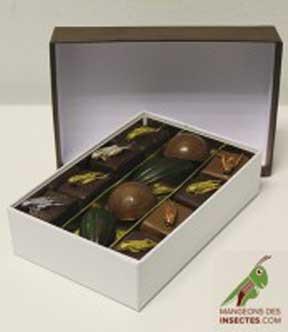 Un petit chocolat aux insectes pour faire passer la grillade de sauterelles