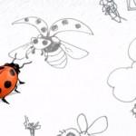 Des insectes plein le ciel