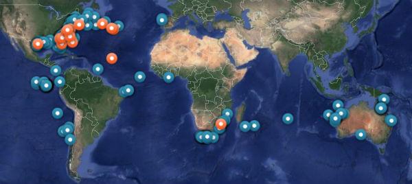 Carte des requins en temps réel