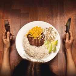 Les OGM dans nos assiettes